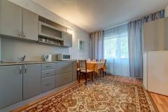Двухкомнатный номер с удобствами на 2 человека с кухней (2)